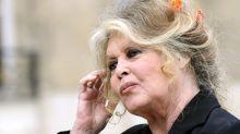 """Sarkozy, Hulot, le FN... Pour Brigitte Bardot, """"les politiques ont un fichier d'électeurs à la place du cœur"""""""