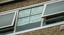 Virus lockdown criticised as 'ham-fisted'