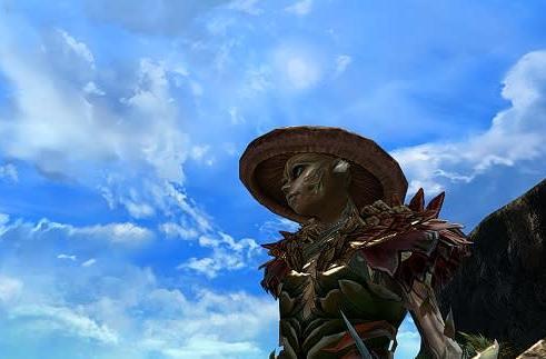 Flameseeker Chronicles: I'd like to build a Guild Wars 2 home