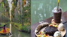 一邊划船一邊喝咖啡!熱帶雨林中用餐 曼谷神秘水上咖啡店