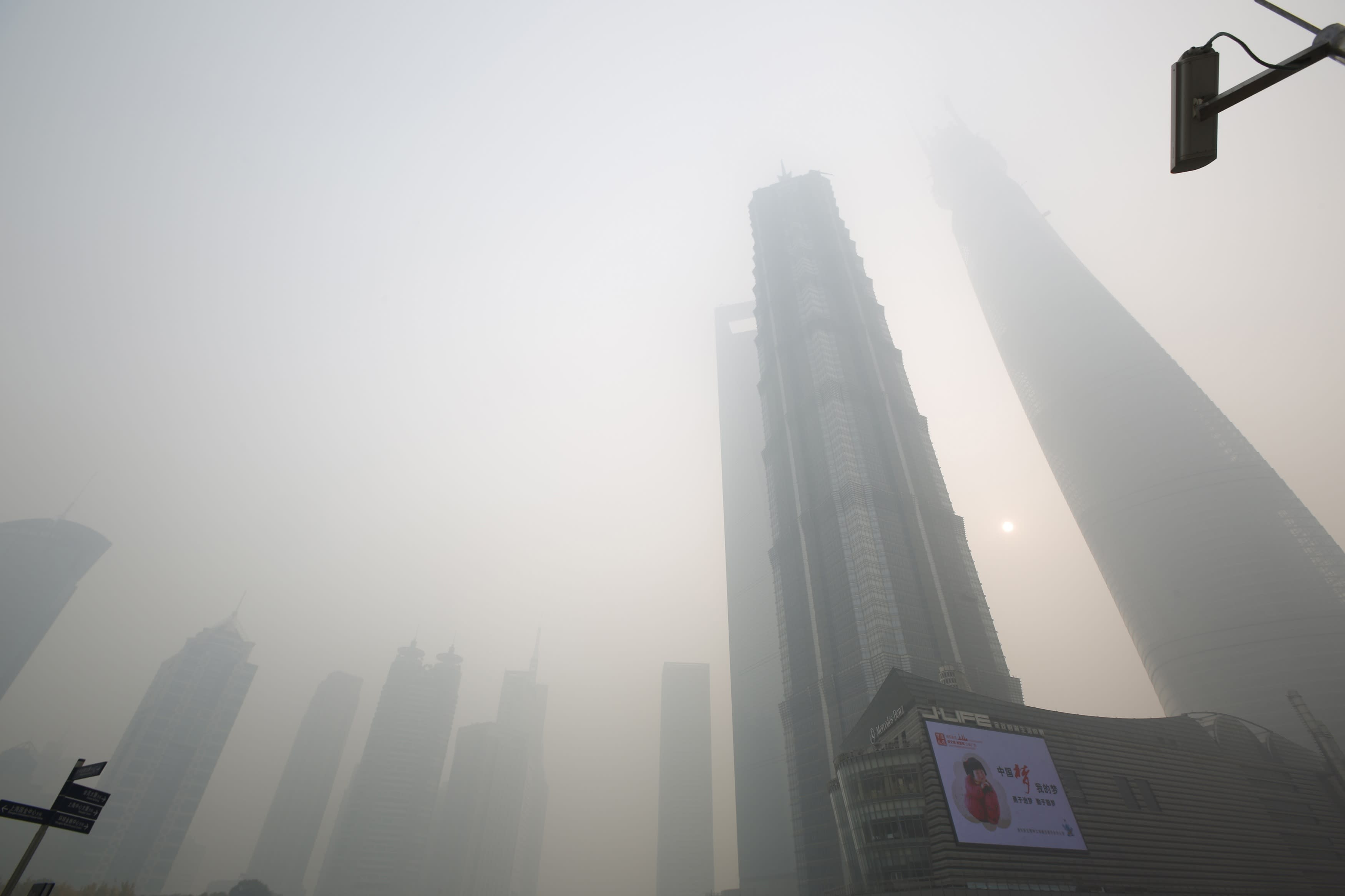 Term paper about smog
