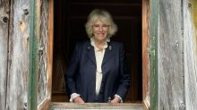 Duchess of Cornwall dubs herself 'ancient fairy godmother' of children's writing competition