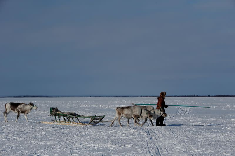 FILE PHOTO: The Wider Image: Russian voting starts early for reindeer herders