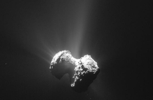 Rosetta finds key building blocks of life in comet dust