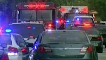 Shooting in Florida leaves 7 dead including gunman