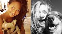 8 Adorable Celebrity Pup Pics in 60 Seconds