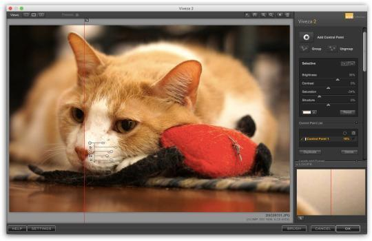 Google's giving away $500 worth of photo software for free — but is it any good?