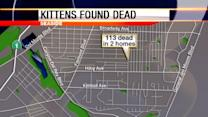 Monterey SPCA: 113 dead kittens found at Seaside cat-nabber's home