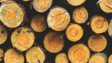 Want To Invest In Deltic Timber Corporation (NYSE:DEL)? Here's How It Performed Lately