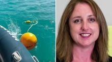 Two sharks killed after attacks in the Whitsundays