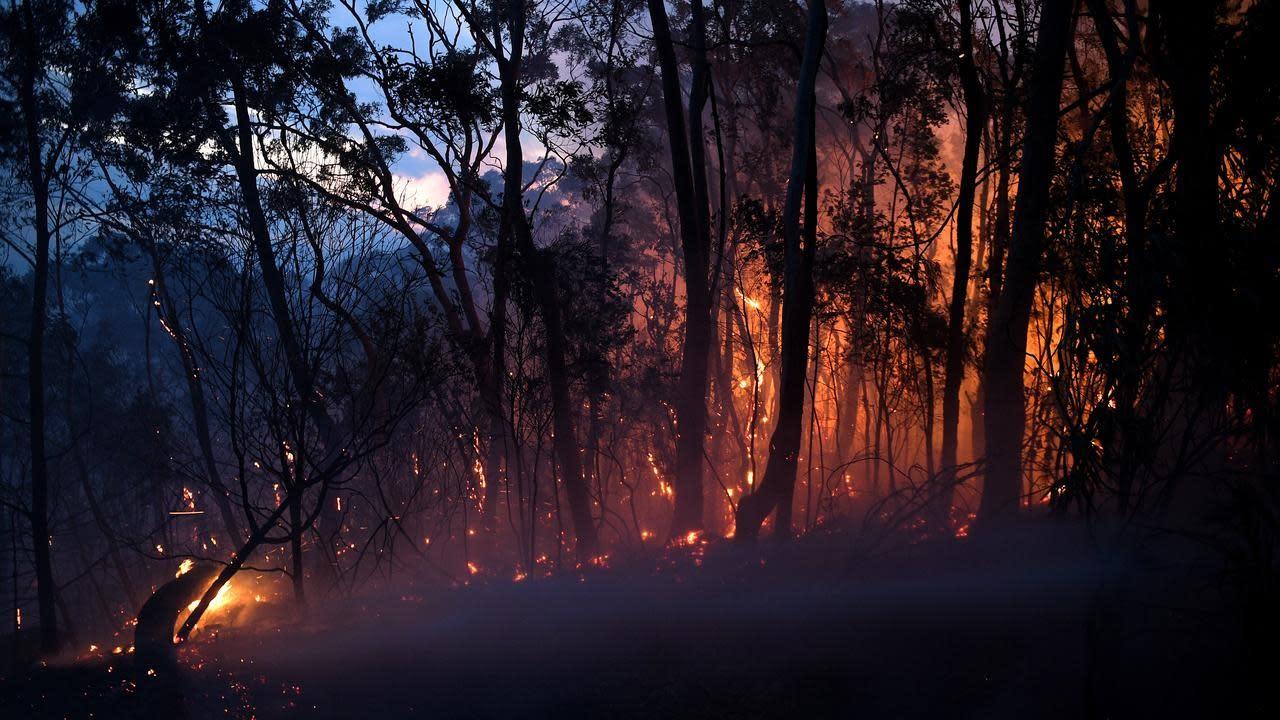 bushfires nsw - photo #3