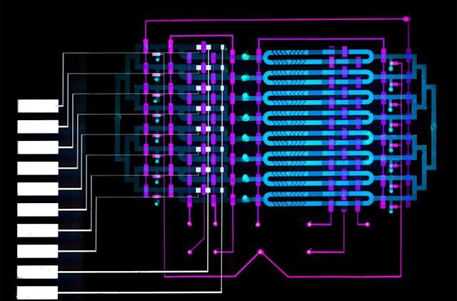 Microfluidic sensor could spot life-threatening sepsis in minutes