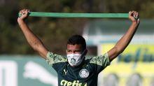 Coordenador científico do Palmeiras pede 'cuidado' com volta de Veron
