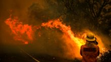 Australian bushfires: The celebrities who've pledged donations to fight the crisis