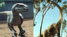 These numbers will tell you if your tech stock is a plodding dinosaur or a speedy raptor
