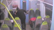 Inglaterra: una exconvicta recién liberada fue condenada por apuñalar a su amiga en un tren