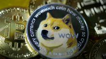 Elon Musk favourite Dogecoin rockets nearly 200% as Robinhood denies restricting trade
