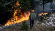 PG&E Stock Rose 15%, Governor Pushed for Wildfire Fund