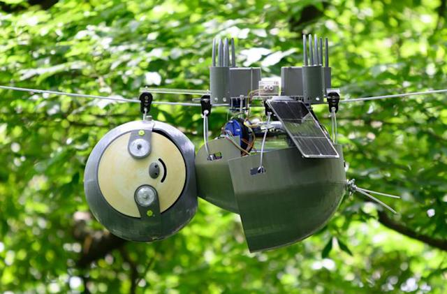 A robot sloth will (very slowly) survey endangered species