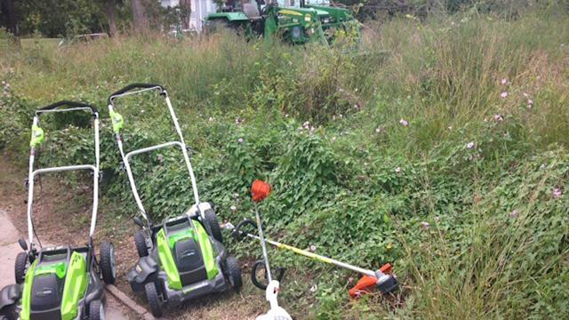 City stepping in to tackle overgrown lots