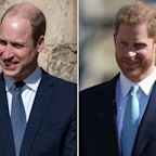 Prince William & Prince Harry Didn't Speak During Easter Service Amid Report of 'Distance' Strategy