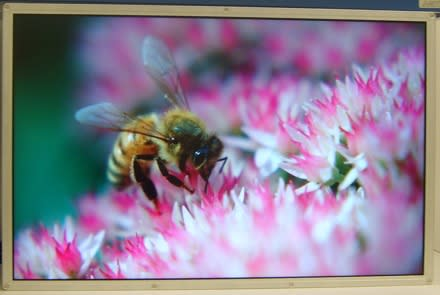 Samsung's 30-inch LCD with world's first DisplayPort -- game-on HDMI