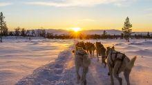 8 Off-Piste New Zealand Snow Adventures to Book Now