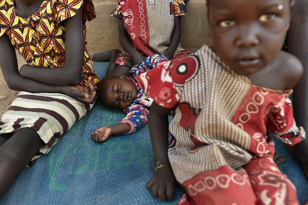 Millions of people in South Sudan have fled their homes (AFP Photo/TONY KARUMBA)