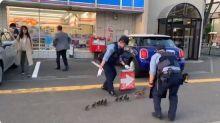 【新片速報】日本警察超有愛 護送鴨仔過馬路片Twitter熱傳