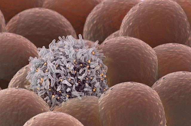 FDA approves a more 'personalized' cancer drug