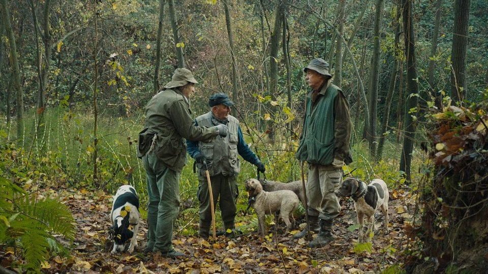 The It List: Charming 'Truffle Hunters' doc is for foodies and dog lovers, 'Raya and the Last Dragon' debuts, original 'Real World' cast reunites and the best in pop culture the week of March 1, 2021