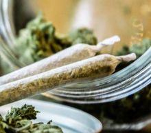 Earnings Will Be Huge for Canopy Growth and Marijuana Stocks