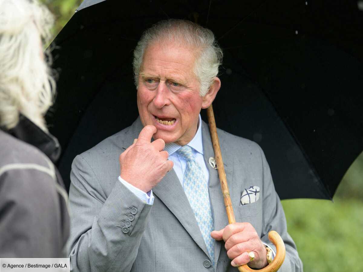 """Le prince Charles """"ennuyeux"""" ? Donald Trump lui décoche une flèche"""