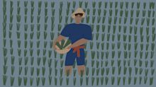 Melioidosis kills half the people it infects, but you've probably never heard of it