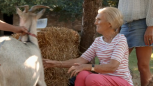 Mary Berry tries (and fails) to milk a goat