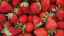 Strawberries Top the EWG's 2020 Dirty Dozen List