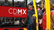 #LadyPerro: Sube a su mascota al Metrobús y agrede a una policía por pedirle que se bajara