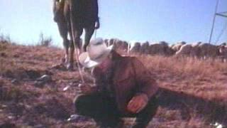 Roswell: The Ufo Cover Up