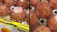 Giant hypermarket apologises for maggots in eggs in Tampines store