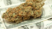 February's 5 Best Marijuana Stocks