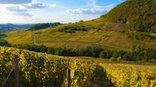 The undiscovered region of France that's suddenly centre stage