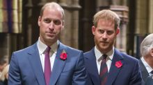 William 'blames Meghan' for brother Harry's 'overboard' parenting: report