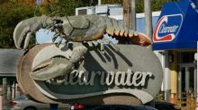 Clearwater keeps sustainability label for offshore lobster fishery, but conditions imposed