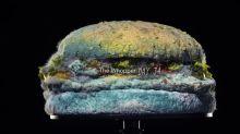 Burger King bane conservantes artificiais e mostra vídeo de sanduíche se decompondo em 34 dias