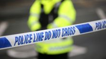 Southall murder probe: man 'jumped from first floor window before dying of stab wounds'