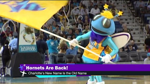Hornets return to Charlotte