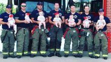 Seven firemen in same station welcome newborns