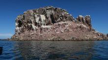 Las especies de las islas evolucionan hacia el enanismo y el gigantismo