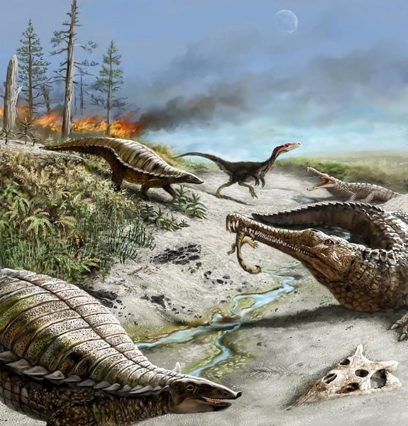 Paradise Avoided: Why Largest Dinosaurs Skipped the Tropics