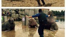 Zookeepers Recreating Chris Pratt's Jurassic World Raptor Pack Pose
